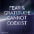 fear-and-gratitude-image